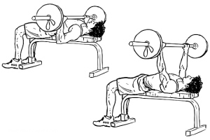 barbell_bench_press_m_workoutlabs