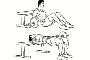 barbell_hip_thrusts